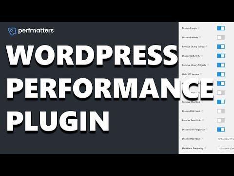 Perfmatters - An Essential WordPress Performance Plugin